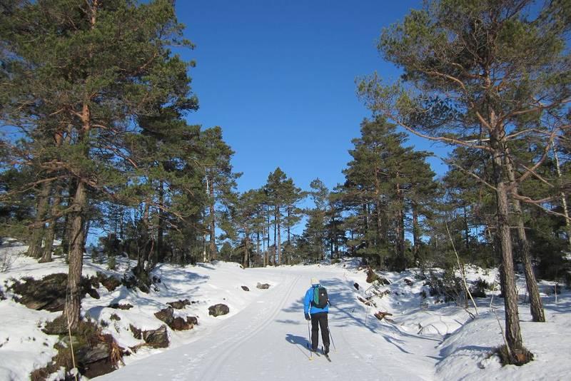 Lit mer av naturen vi hr går på ski i.