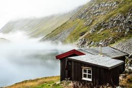 Svartvassbu -  Foto: Martin Gjellestad