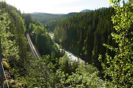 Langs den gamle anleggsvegen ser en rett ned på jernbanelinja og elva Luru. - Foto: Kristian Nesser
