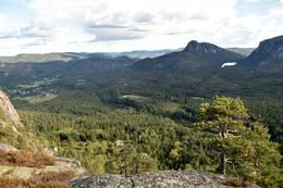 Utsikt mot Bø i Tørdal og Rønnomnibben  -  Foto: Knut Åkredalen