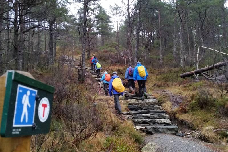 Sherpatrappa som startar der stien frå Torvmyra skule og stien frå Solheim møtast i Tofleskardet