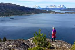 Utsikt fra Kollen - Foto: Kjell Fredriksen