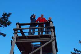 God utsikt fra toppen av utsiktstårnet - Foto: Per L. Engene