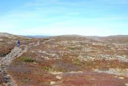 på sti fra Tuva mot Storbekkfjell/Myklebysjøen - Foto: Margrete Ruud Skjeseth