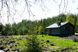 Fra tjern og skog til vidde og fjell - Hedmarksvidda er et snilt område med turmuligheter for alle - Foto: Jan Schrøder