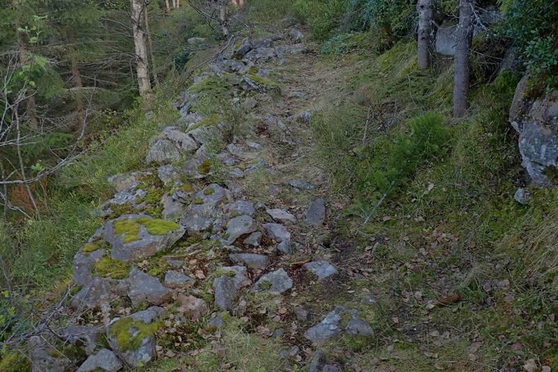Gammel oppbygd hestevei mellom Børkemoen og Gjevlekollen er kulturminne i dag