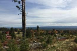 Utsyn over seterområdet og Hedmarken - Foto: Margrete Ruud Skjeseth