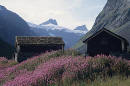 Hva med å ende turen med en vanding gjennom Stølsmaradalen på vei ned til Vetti Gard!? - Foto: Per Roger Lauritzen