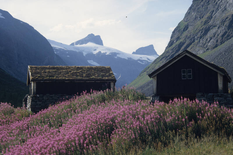 Hva med å ende turen med en vanding gjennom Stølsmaradalen på vei ned til Vetti Gard!?