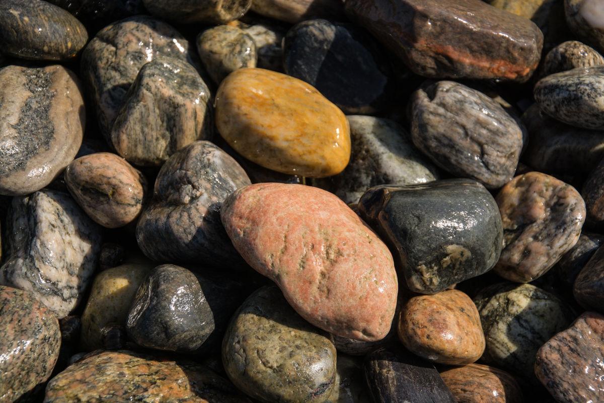 Rødt, gult, grått? De fleste steinene på stranden er av gneis, men du kan også finne eksotiske steinslag.