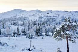 Vinter på Hårskallen - Foto: Skallstuggu