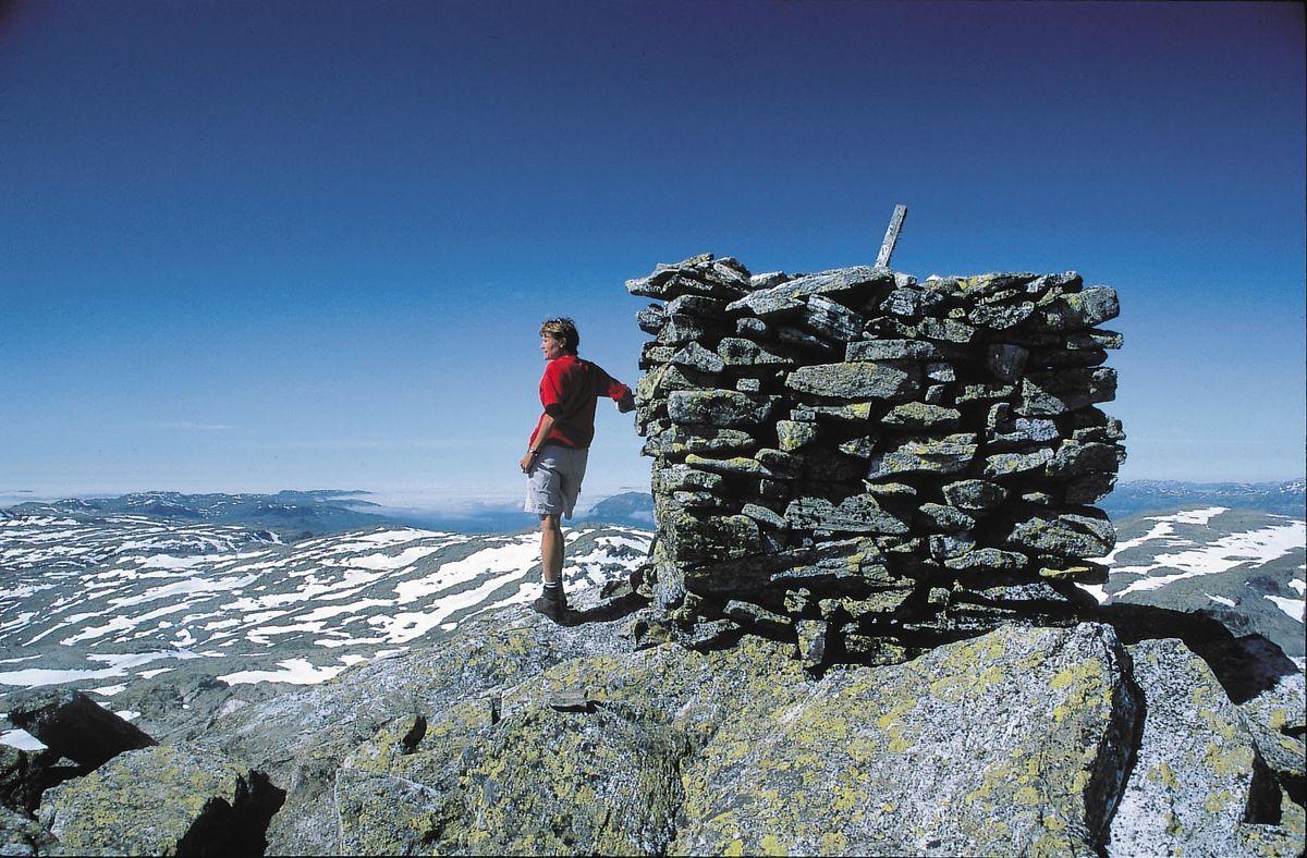 Snønuten (1606 moh) er et populært dagsturmål fra hytta