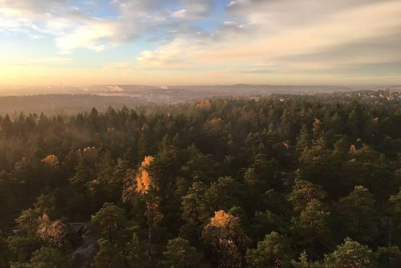Utsikt fra tårnet