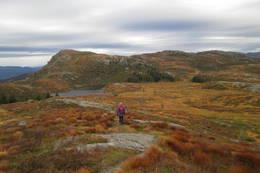 Badnavatnet -  Foto: Torfinn Dommersnes