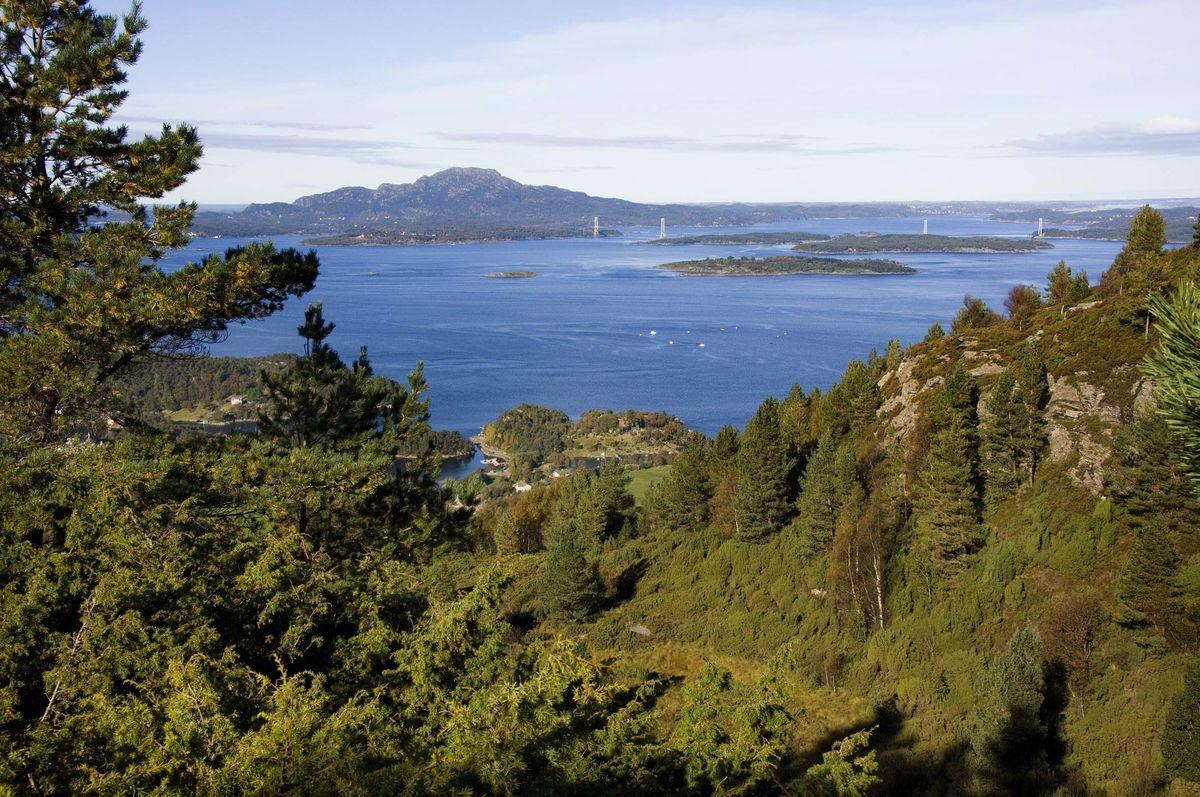 Utsikt mot Siggjo og Trekantsambandet