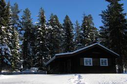 Strøkent vintervær ved Råbjørnhytta - Foto: Einar Ingebrigtsen