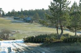 Orreleik på Gammelsætra - Foto: Ukjent