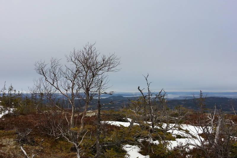 Utsikt underveis til toppen