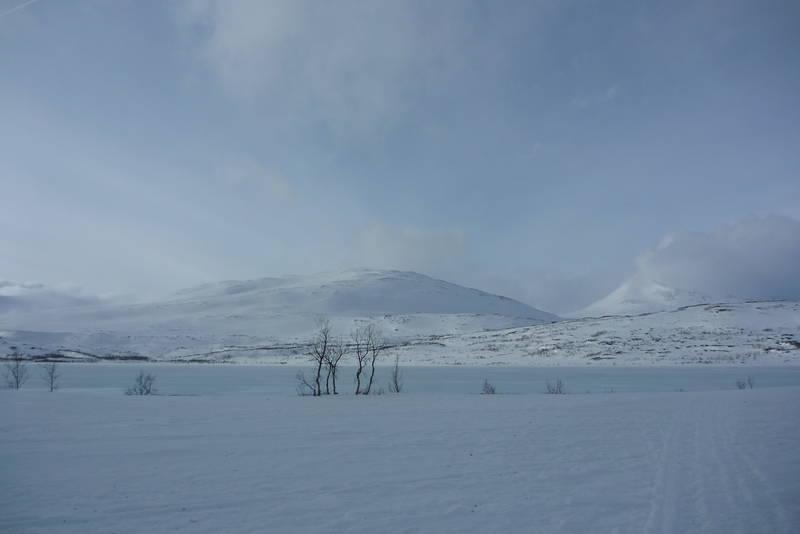 Flott skiterreng rett fra hytta. Garantert ikke oppkjørt med maskin!