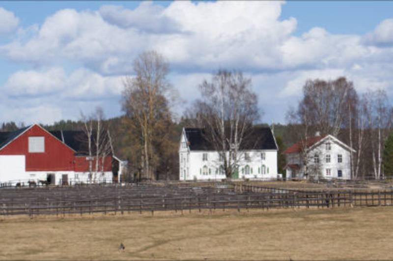 Storgård i Heradsbygd