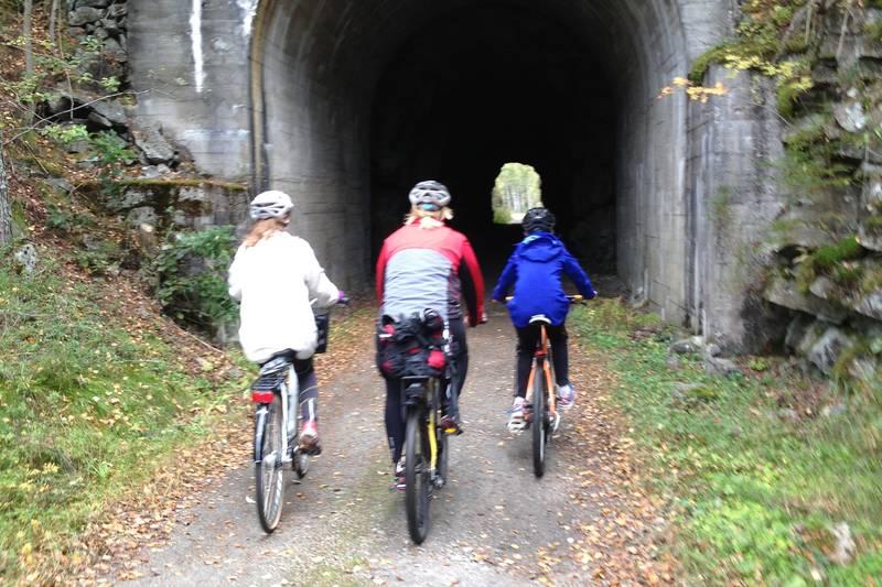 Det er fem tuneller på veien