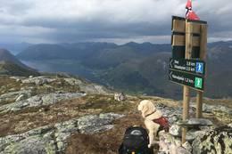 Utsikt frå Skafonnfjellet - Foto: Anne Cecilie Kapstad