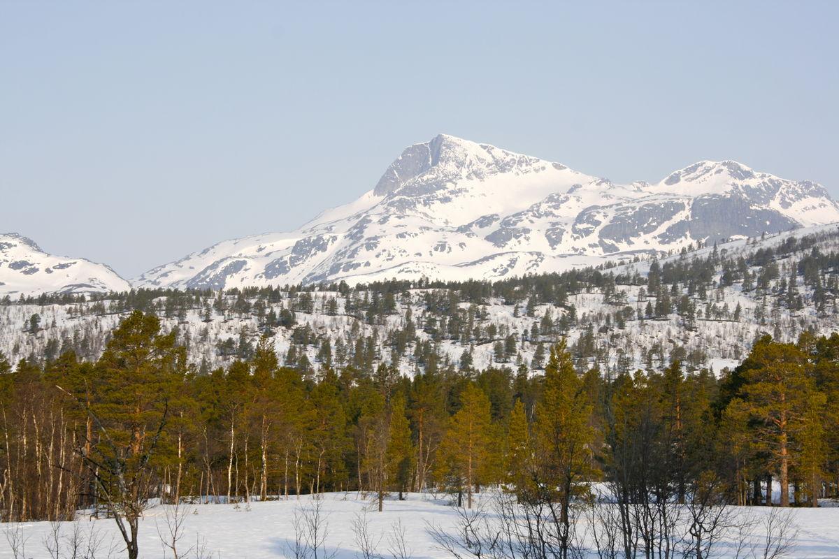 Utsikt til Snota fra Trollheimshytta