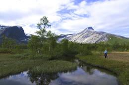 Nordfoldaksla sett fra sør. -  Foto: Kjell Fredriksen