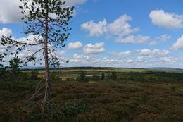 Utsikt fra Vesl-Svaen -  Foto: Emilie Westli Andersen