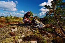 Ved varden på toppen av Sandvikheia 541 m.o.h -  Foto: Rune Ness.