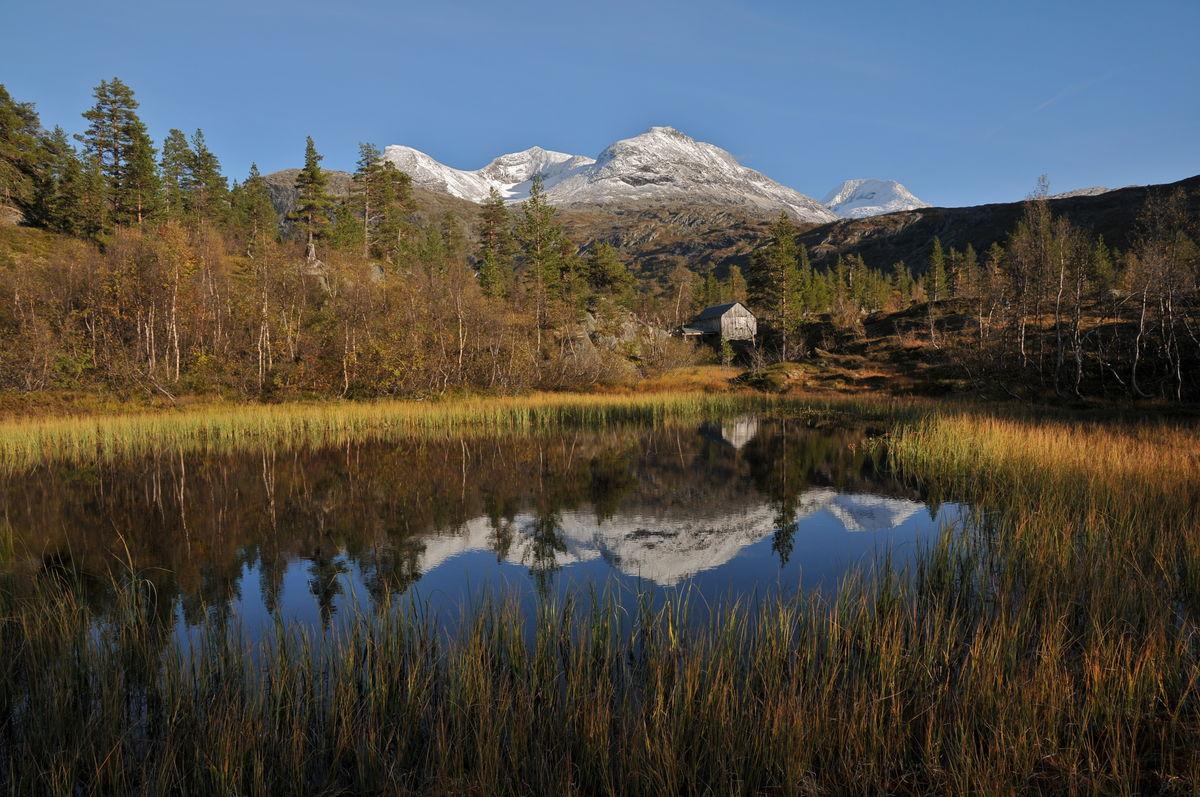 Den restaurerte Reindalssaga i Reindalen