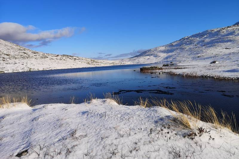 Vinter ved Svintestrandsvatnet