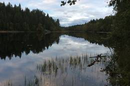 Hvamsetertjern -  Foto: Mette Rolstad