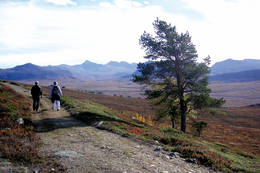 Vandring på Gruvelistien -  Foto: Steinar Tolf Jacobsen