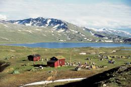 Hyttene ligger på ei slette som er velegnet for telt, og mange fjellfester har av den grunn blitt avholdt her. -  Foto: Bodø og Omegns Turistforening