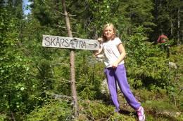 Turstien til Skårsetra starter ved Grunntjernsveien.  -  Foto: Hilde Roland
