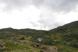 Stølslag - Foto: Tone Repstad