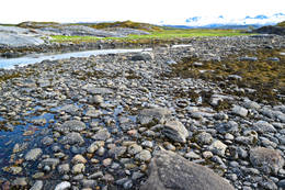 Tverlandet Naturreservat - Foto: Tursiden for Bodø og Salten