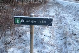 Starten på Hammerstadsletta - Foto: Johan Eide