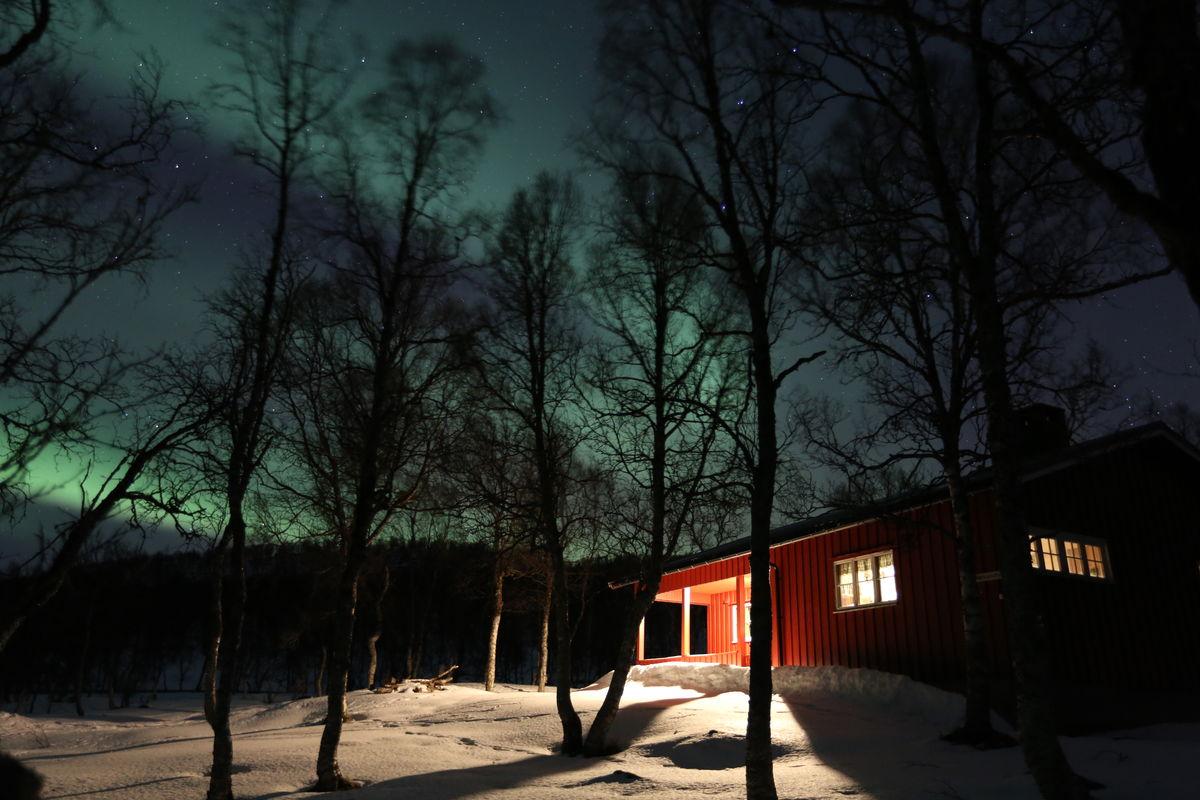Bjørnhaugen under nordlyset