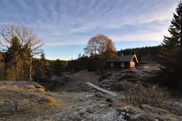 Strøken sein oktoberdag ved Øvresaga - Foto: Hallgrim Rogn