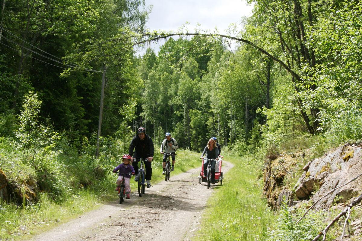 Vekterveien, enkelt sykkelterreng, flott for barnefamilier