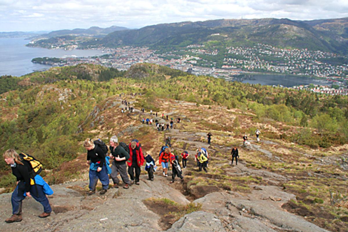 Utsikt fra Løvstakken ut over byen og fjorden