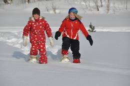 Truger kan gi nye opplevelser og er en fin måte å oppleve vinteren på. - Foto: Jan Kenneth Gussiås