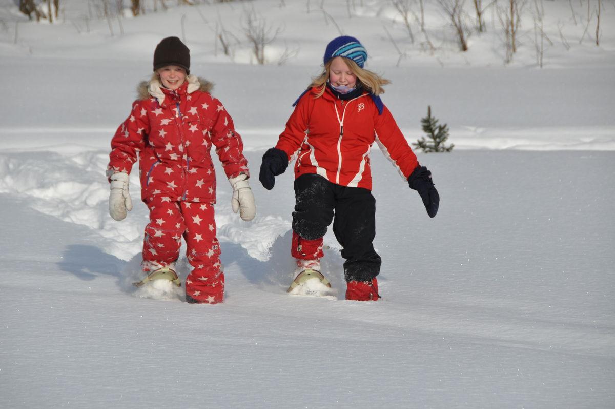 Truger kan gi nye opplevelser og er en fin måte å oppleve vinteren på.