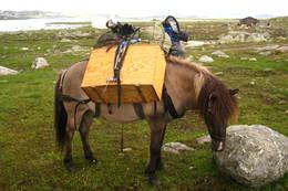 Hestetur til Sandhaug - Foto: ukjent