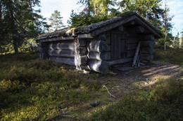 Ljørkoia ved Yksnsjøen -  Foto: Morten Berntsen