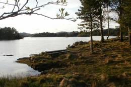Utsikt over vatnet - Foto: Torfinn Dommersnes