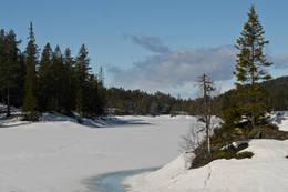 Flekkerhytta, Svanstul, Skien - Foto: Kyle O Donoghue