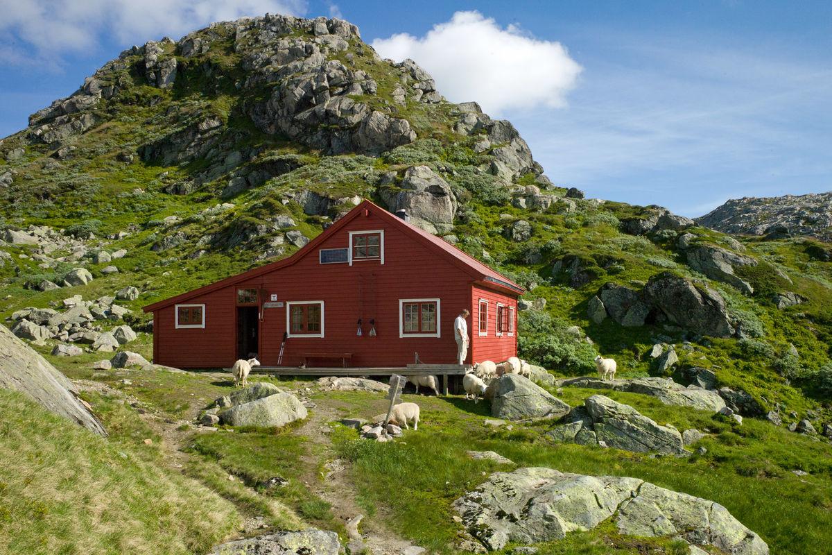 Høgabu er en av Bergen og Hordaland Turlags eldste hytter, bygget i 1937